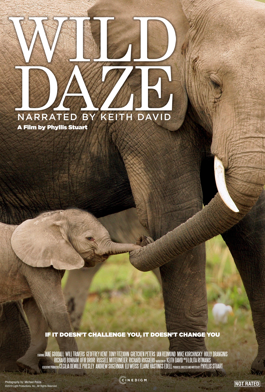 Wild Daze