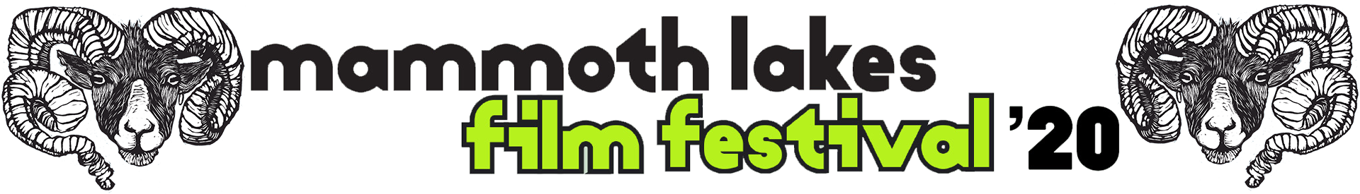 2020 Mammoth Lakes Film Festival