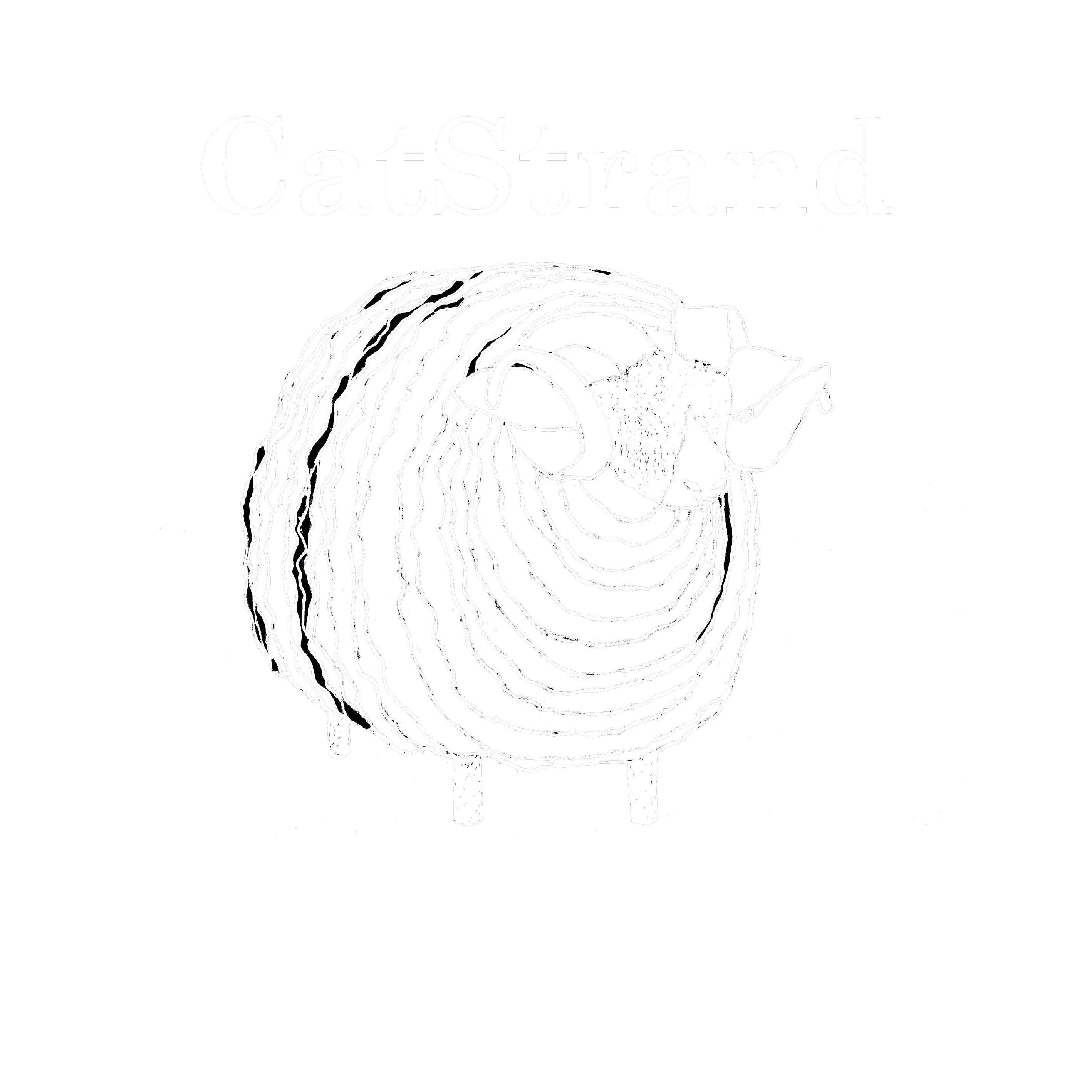 CatStrand at Home